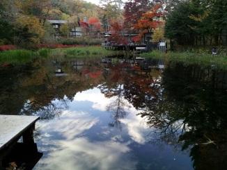 雲場池の水面